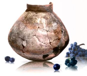 wine-pot1